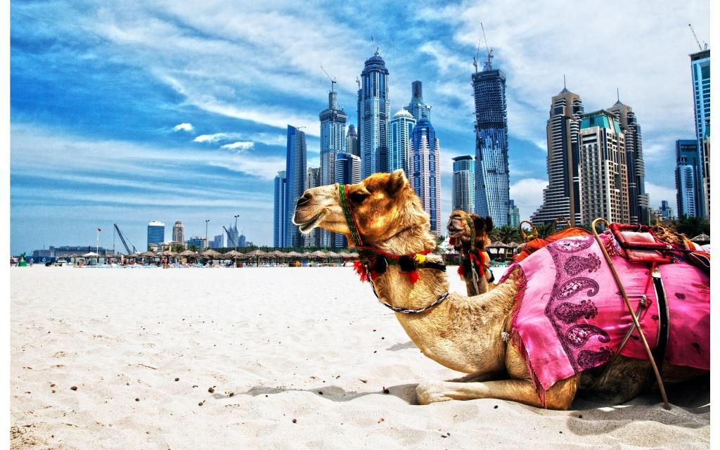 Dubai- Pic courtesy- http://hookedoneverything.com/