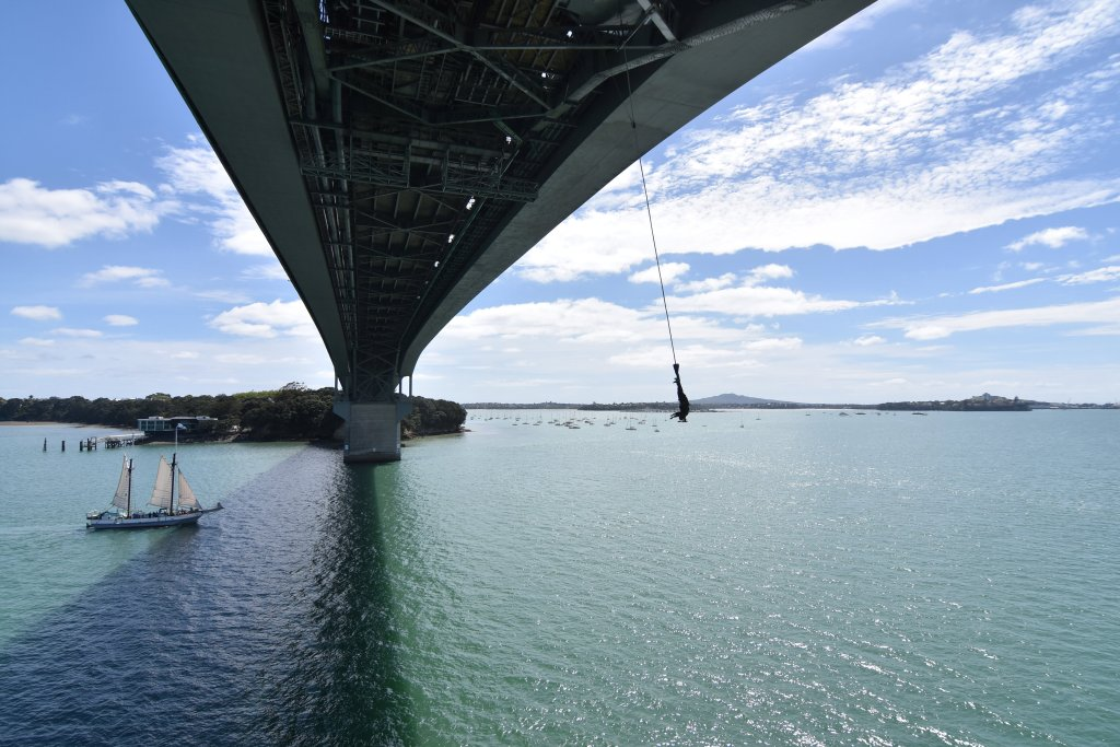 auckland_bungee