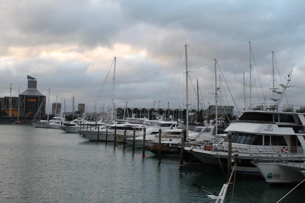 auckland_harbour
